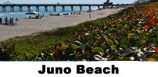 Juno Beach Real Estate & Homes for Sale